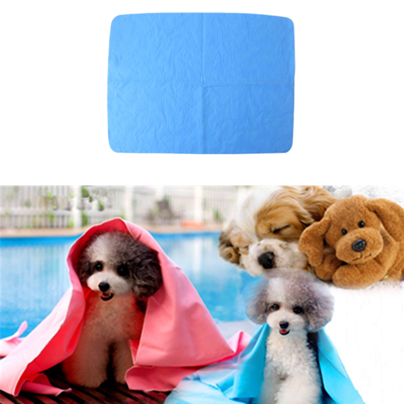 China Shenzhen Factory Wholesale Pva Towel Pet Dog Towel For Swimming