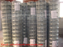 Hot Dipped Galvanized Welded Wire Mesh, 1/2'' Mesh Hole, 18,20&22 Gauge Wire, 48 Inch Tall X 50 Feet Long