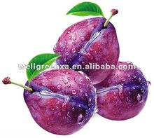 top quality Smoke Plum Black Plum Extract
