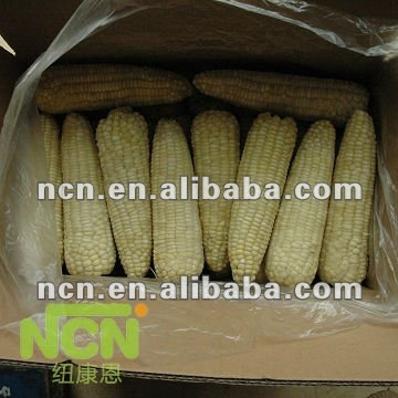 IQF Frozen white maize non gmo for sale