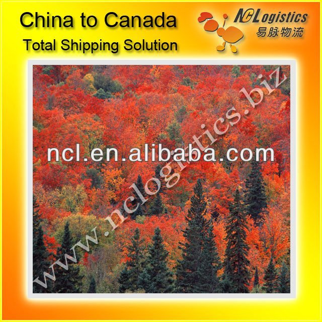 shipping from guangzhou export to Montreal QC