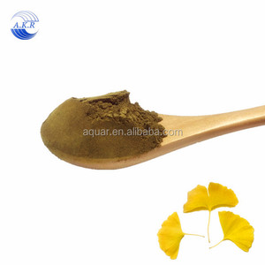 Regulation of Blood System ginkgo leaf extract biloba ginkgo extract