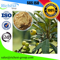 GMP factory supplier Organic Loquat Leaf Extract Ursolic Acid Powder CAS 77-52-1