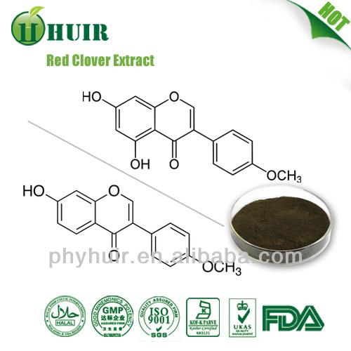 Top quality red clover extract from China