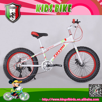 BMX style bike 2015 20 inch student bike, fat bike, fat tire bicycle, cycling for teenage