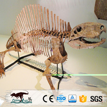 OA8145 dinosaur skeleton statue model of skeleton replica