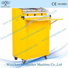 VS-600E Iron Body Automatic External Stand Type Fish Fruit And Vegetable Vacuum Packing Machine