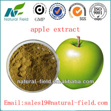 green apple extract powder with China manufacturer
