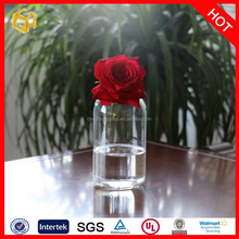 wholesale new design Hot clear glass vase