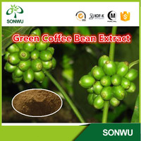 For loss weight powder pure green coffee bean extract by factory supply