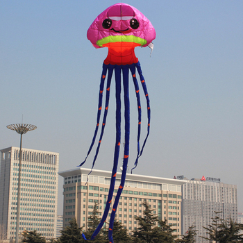 cute acaleph fish shaped kite
