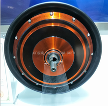 DM-260 electric wheel hub motor