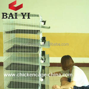 Layer Quail Broiler Cage & Poultry Farming Equipment For Sale
