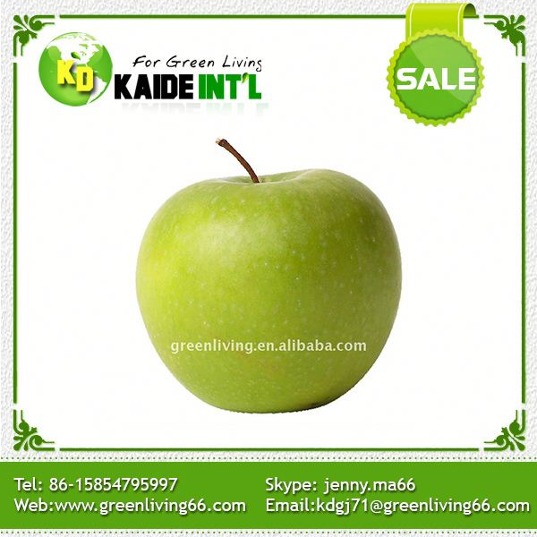 Popular In Netherlands Rich Experience Bulk Fresh Green Apples