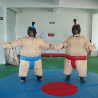 Hot sale inflatable fighting sumo