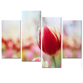 Wholesale Tulip Photo Canvas Prints Beautiful Pink Flower Canvas Printing Artwork Home Wall Decoration
