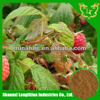 100%Original raspberry seed extract/raspberry seed extract powder/raspberry seed powder extract plus top quality good price