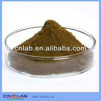 UHT Steam Treated Angelica Root Extract