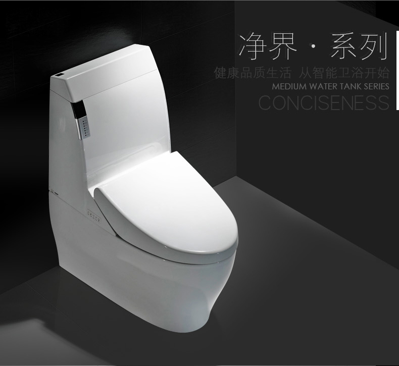 automatic bidet toilet/ ceramic japanese wc with spray KD-T002A