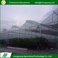 Wholesale custom sawtooth roof open plastic strawberry greenhouse film
