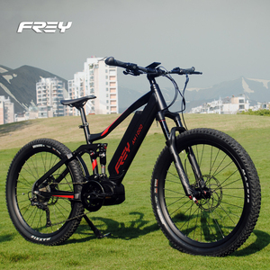 3rd Gen AM1000 Bafang ULTRA G510 mid motor full suspension eMTB 48V 1000W mountain electric bike Stealth bomber bike