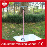 With TUV/SGS Certification New Products duck head cane
