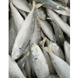 Frozen Fish/ Horse Mackerel/ big eye scad/air Price