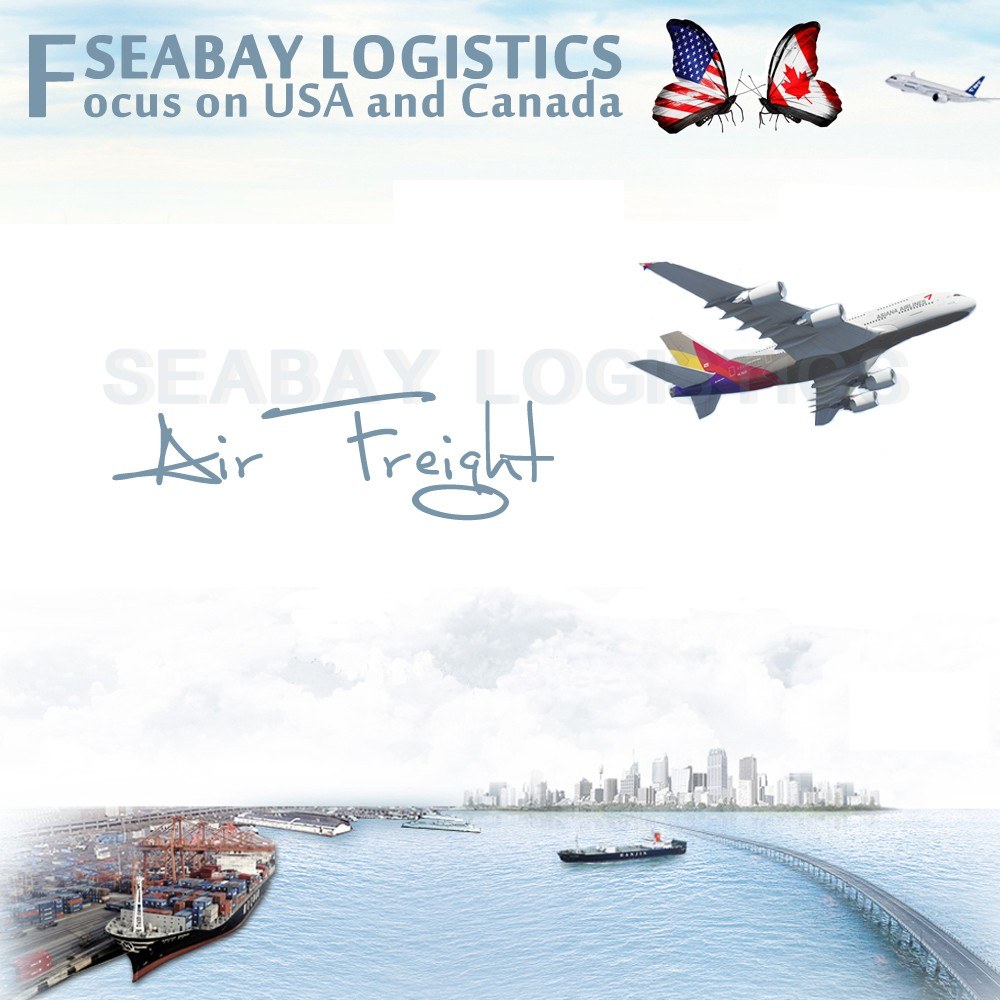Professional Air Cargo Freight Forwarding Service to USA from China