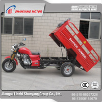 Cheap Motorized Passenger Tricycle Motorcycles Sidecar / 250cc Automatic Moto Tricycle For Sales