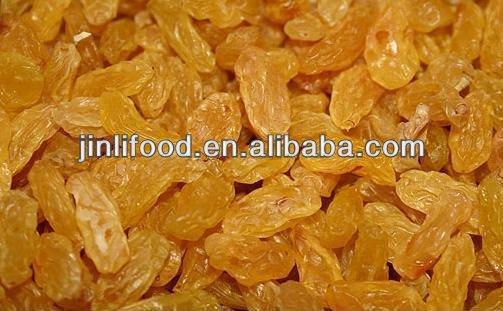 sweety xinjiang raisin good price