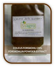 Sell 100% natural Coleus Forskohlii Extract slimming herb, high quality
