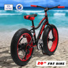 New design 20'' fat tire kid bike