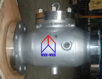 Stainless Steel Jacket Swing Check Valve