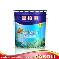 Caboli water based odorless acrylic resin sand texture paint