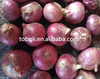 /product-detail/chinese-fresh-red-onion-hot-sale-root-part-yellow-onion-60632223282.html
