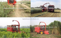 agriculture machinery equipment Feed mulberry grass cutter machine price in sri lanka