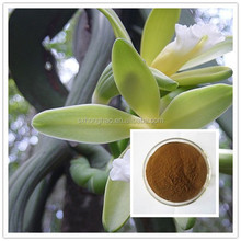 honghao 100% natural brown powder vanilla extract prices