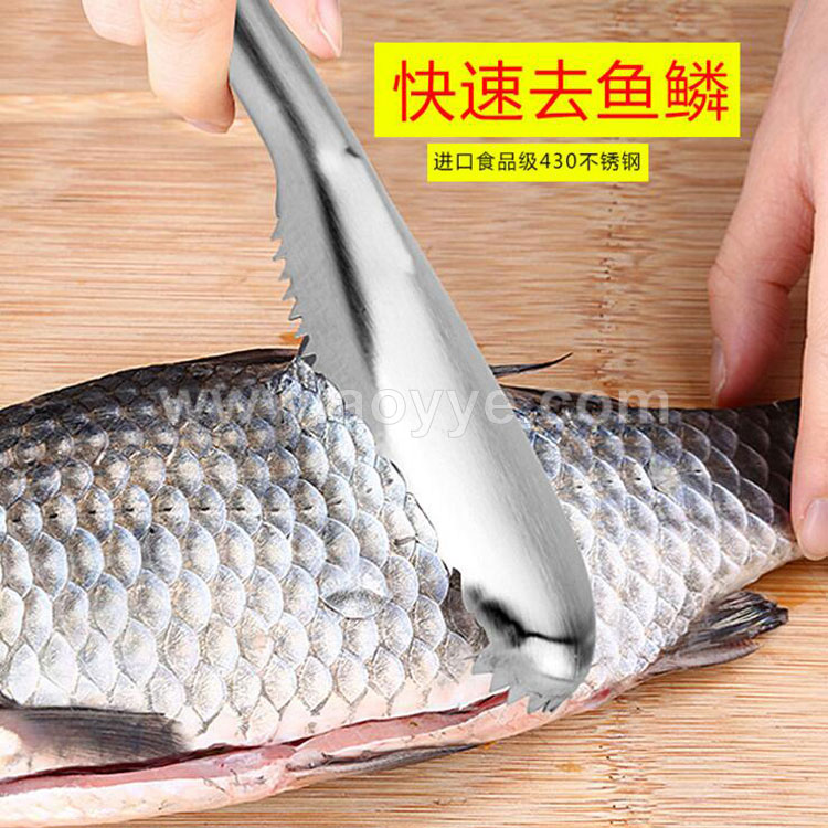 Wholesale stainless steel Fish scales scraper, food grade fish scales scraper with metal handle kitchen cooking tools
