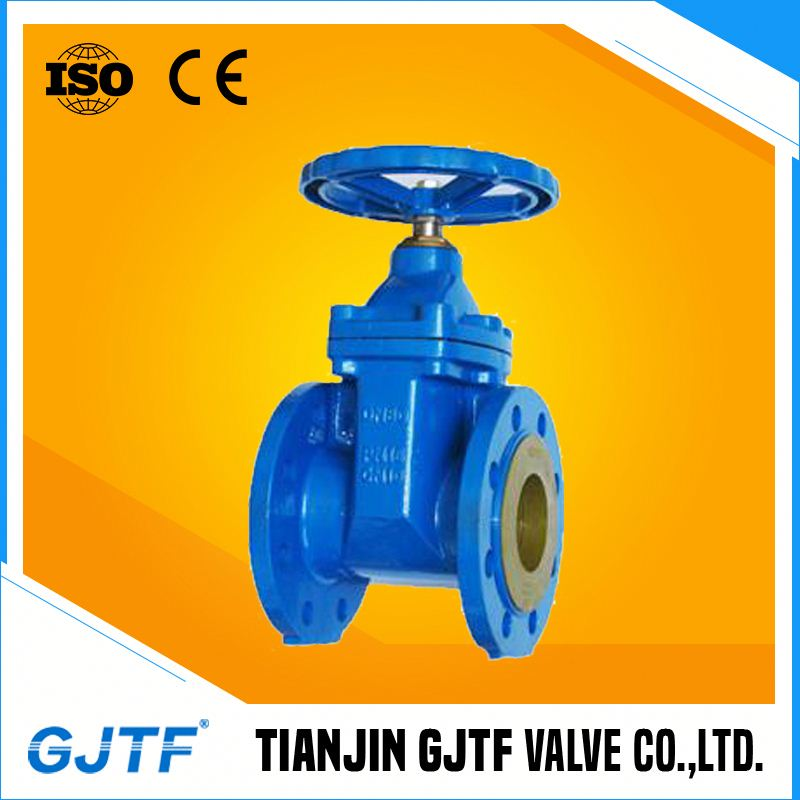 bs3464 cast iron worm gear gate valve pn10 hot sale