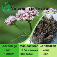 High quality valerian root extract/valerian extract powder/valerian extract