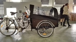 2015 hot sale CE certification electric cargo bike/ cargo tricycle / trike