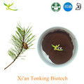 Tonking offers good quality pine needle leaf extract powder