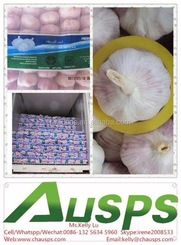 china wholesale nature garlic price