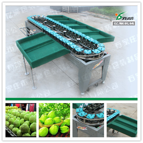 Guava/Apple/Pear/Mango/Tomato/Potato weight grading machine