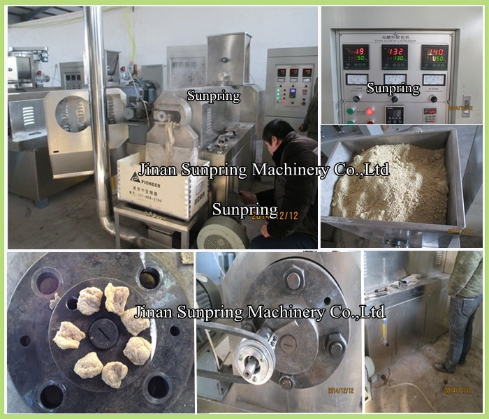 Small Soya Meat Processing Line