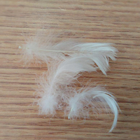 Washed white duck feather filled for sofa