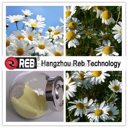 Reb 100% Purity high quality Chamomile extract apigenin 1.2% 3% 5% 98%