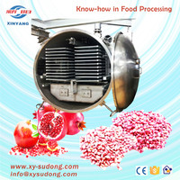 LG75 freeze dried fruit machine wholesale/ pomegranate fruit freeze drying machine /commercial fruit freeze drying machine