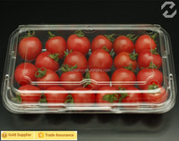 Tomato Packing Container