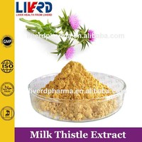 Silymarin Extract from Natural Milk Thistle Seeds